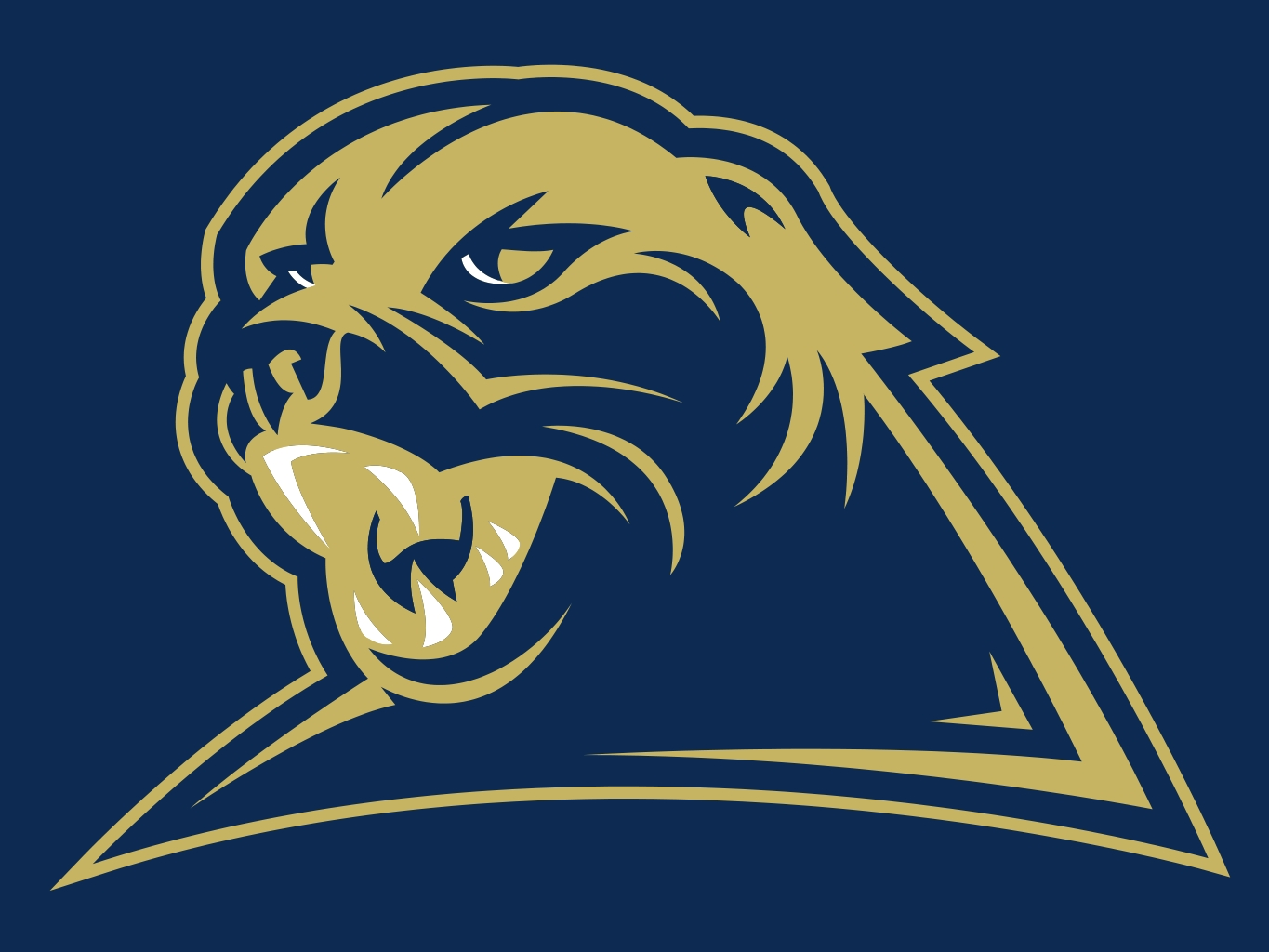 Pittsburgh Panthers Tickets